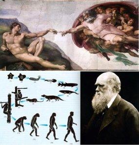 Creacionismo versus evolución