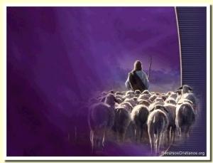 pastor seguido por ovejas