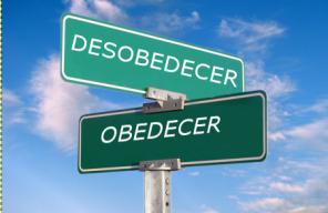 camino obedecer