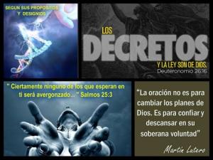 decreto 2