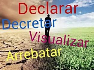 declarar, visualizar, decretar