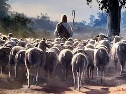 JESUS PASTOR PAPA