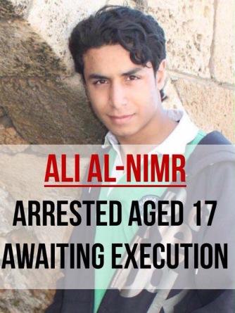 Ali al-Nimr