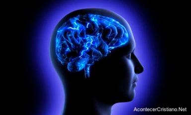 ciencia-cerebro-dios